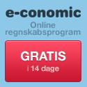 e-conomic_banner_125x125_g
